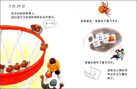 蜘蛛的日记