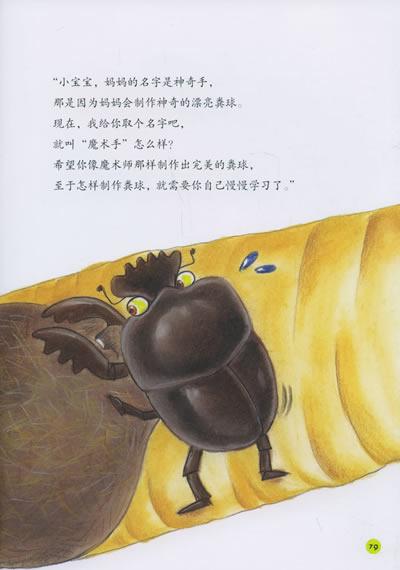 法布尔昆虫记:大自然的清道夫粪金龟