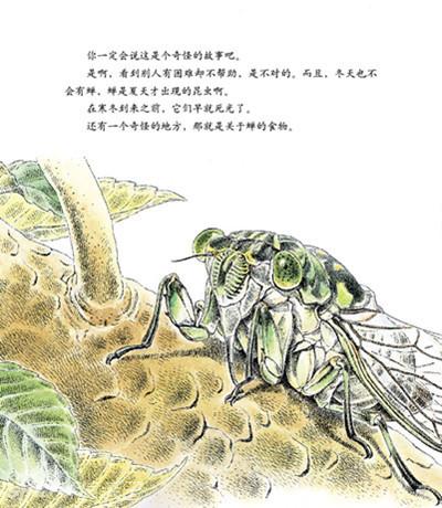 法布尔昆虫记:夏日音乐家蝉