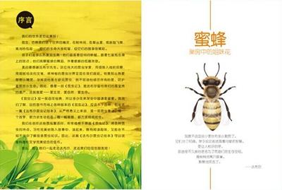 法布尔昆虫记:聪明的猎人节腹泥蜂 手术专家砂泥蜂